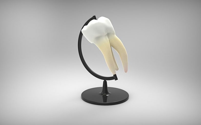 dental tooth sculpture